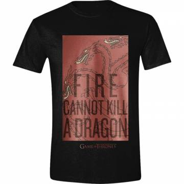 Fire Cannot Kill A Dragon-Game Of Thrones 38533
